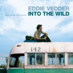 Eddie Vedder - Into The Wild.jpg
