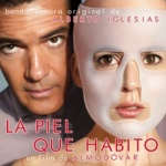 Alberto Iglesias - La Piel Que Habito.jpg