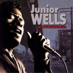 Junior Wells - Best Of The Vanguard Years.jpg